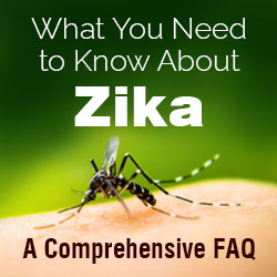 Zika FAQ - Sexually Transmitted