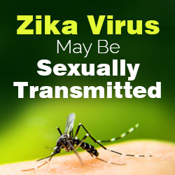 Zika Virus Sexually Transmitted